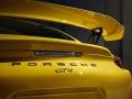 PorscheCaymanGT4_04